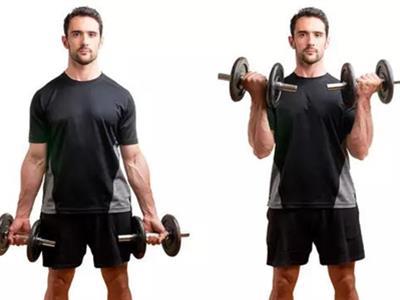 肱三头肌及肱二头肌训练