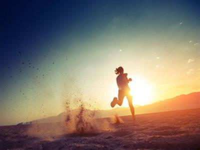 减脂健身锻炼计划