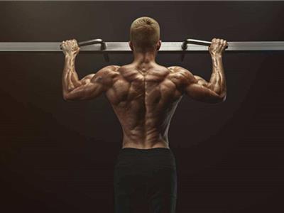 引体向上背部及手臂肌肉锻炼计划