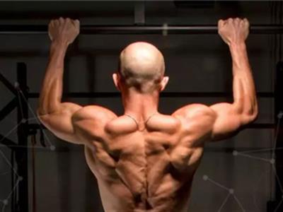 背部三角肌锻炼计划