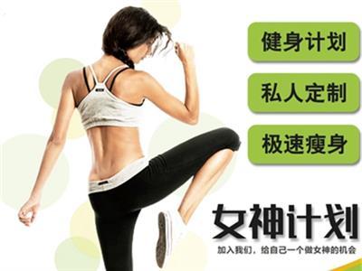 健身服务极速瘦身健身计划定制的封面图