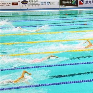 自由泳游得更快的技巧方法