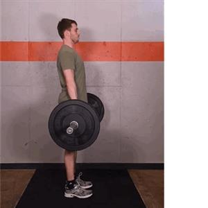 健身新手需要掌握的三个基本训练动作