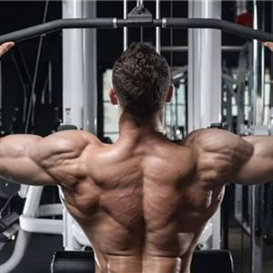 背部训练技巧分享