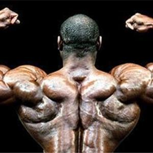 锻炼背部肌肉的三大技巧