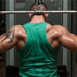 六大背部肌肉锻炼动作