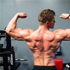 刺激肌肉增长的十二个秘诀