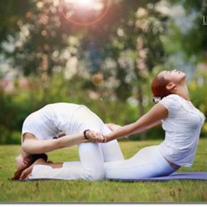 8个锻炼腰背的瑜伽动作