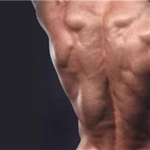 四组斜方肌锻炼方法
